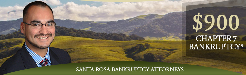Sonoma Bankruptcy Law